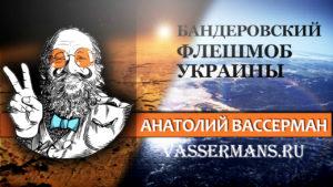 Вассерман отреагировал на бандеровский флешмоб МВД Украины